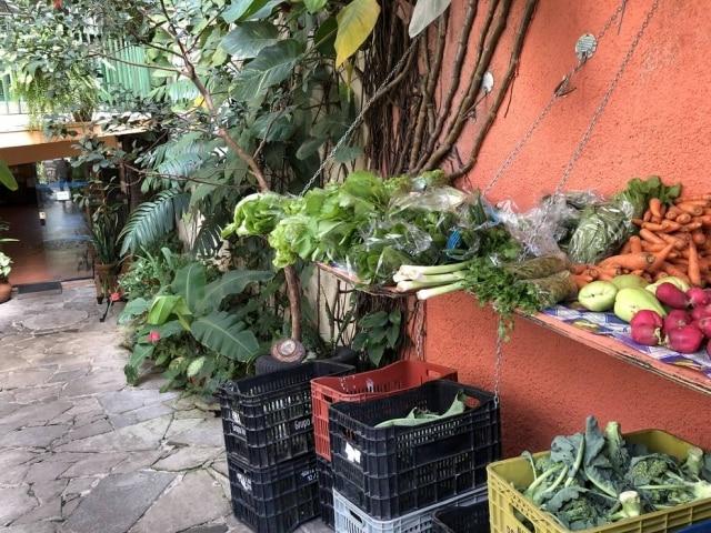 Feirinha de orgânicos da Casa Jaya ocorre toda terça e sábado, a partir das 9h