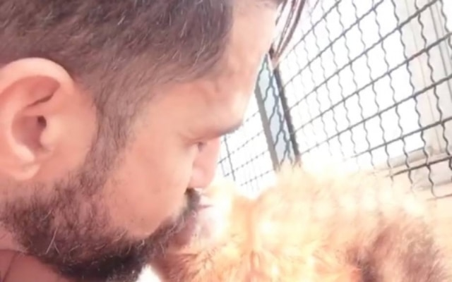 Cantor Latino e sua nova macaca, Ana Paola