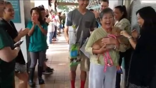 Cadela Beauty foi adotada por uma idosa e seu neto