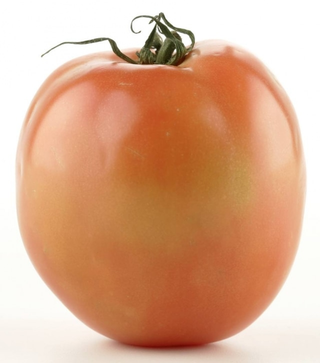 Tomate débora.