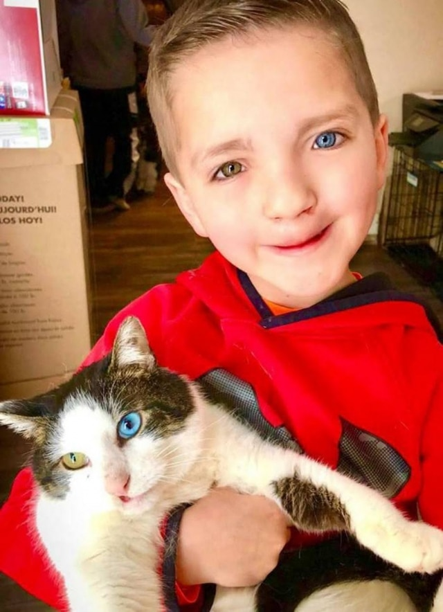 O garoto Madde, de sete anos, e seu gatinho Moon.