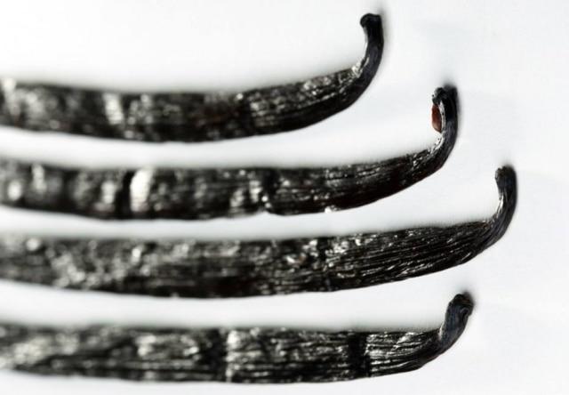 Favas da baunilha, utilizada em diversos pratos da culinária mundial