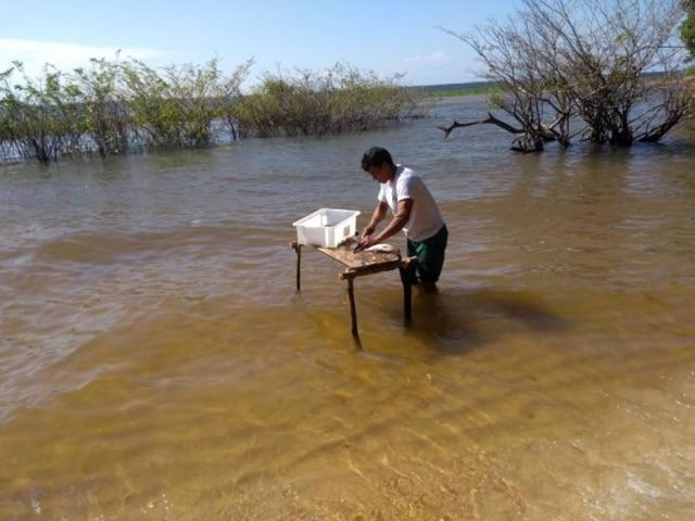 Piracaia, tradicional churrasco de peixe na beira da água no rio Tapajós