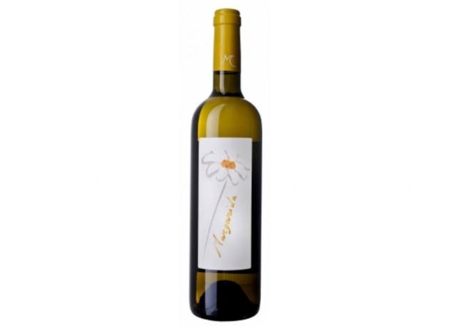 ae279f3e7d3 40 vinhos para o verão de R$ 42 a R$ 120 - Paladar - Estadão