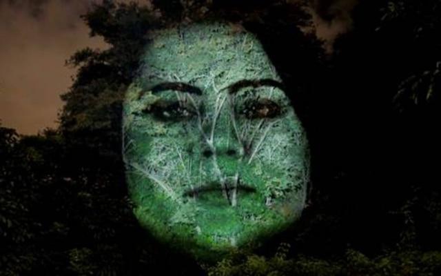 Rosto de mulher com PAF projetado em copa de árvore noParque Prefeito Mário Covas.