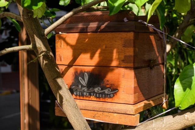 Uma das caixinhas de abelhas está no restaurante Evvai