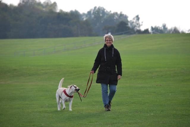 Caminhada ou corrida são bastante indicados