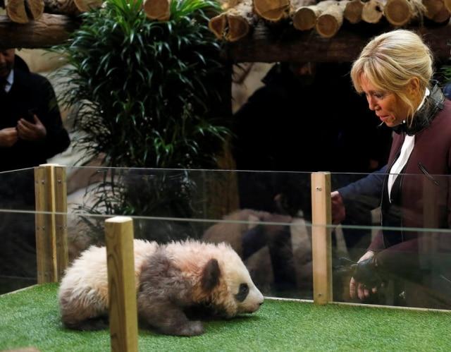 Brigitte Macron na cerimônia de nomeação do panda