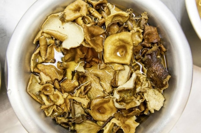 Mix com mais de dez espécies de cogumelos, que fazem parte da dieta dos índios Sanöma