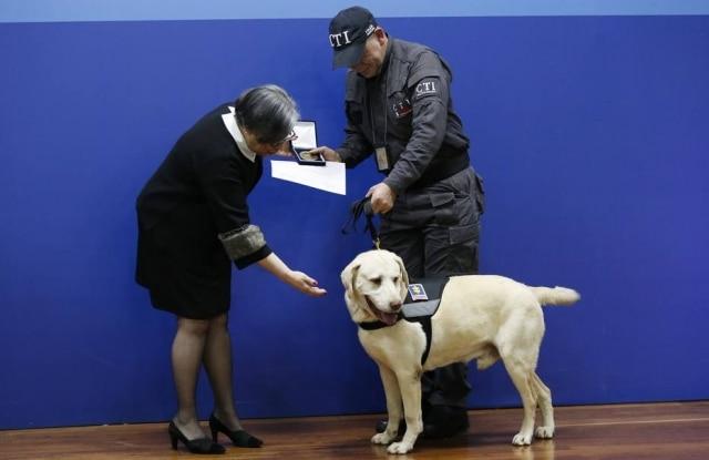 Yaco, guiado por seu treinador Pedro Camargo, recebe um certificado e uma medalha das mãos da Procuradora-Geral Adjunta Maria Paulina Riveros por seus anos de trabalho.