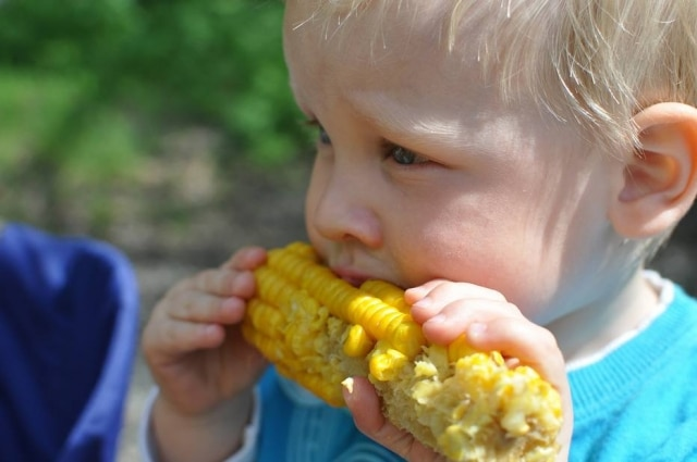 Os hábitos alimentares adquiridos na infância são determinantes para a definição da alimentação na vida adulta.