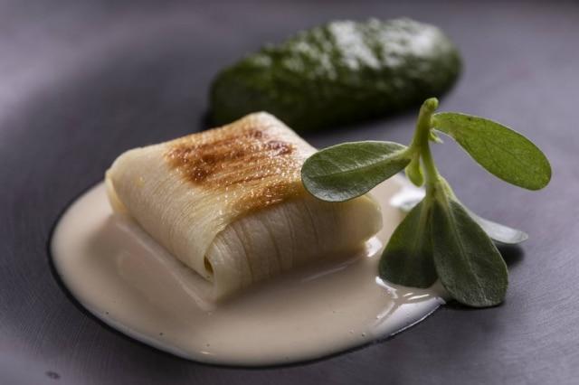 Palmito, vatapá, leite de coco e taioba.