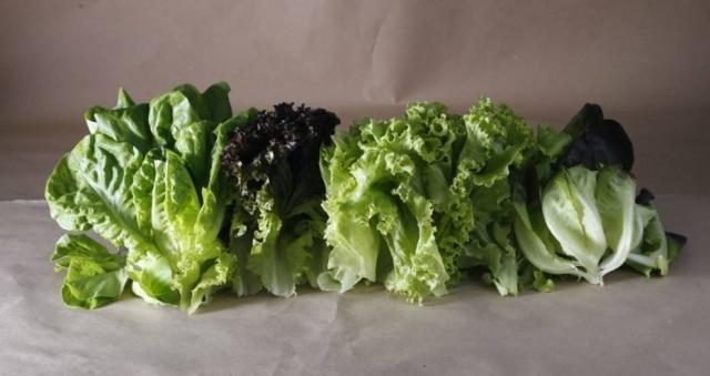 Vegetal está na mesa de grande parte dos brasileiros