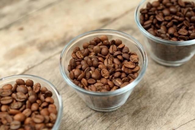 Grãos de café em torra clara, média e escura.
