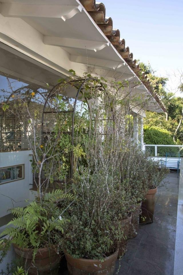 Projeto de Maurício Nóbrega contou com diversos tipos de plantas para então criar um ambiente de frescor na área externa deste ambiente