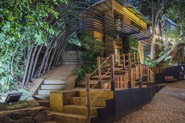 Regi Amaral - Casa da Árvore