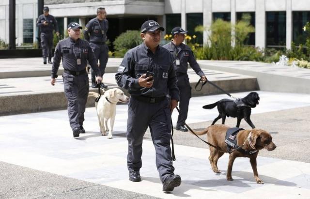 Canela e seu treinador chegando à cerimônia de aposentadoria de cães farejadores da polícia colombiana.
