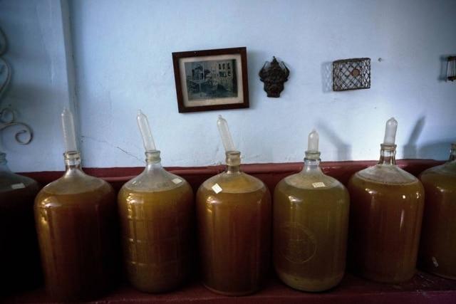 Vinícola cubana tem um processo inusitado de fermentação de vinhos.