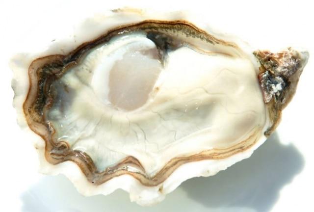 O sal  e o iodo são os maiores desafios impostos pela ostra na harmonização