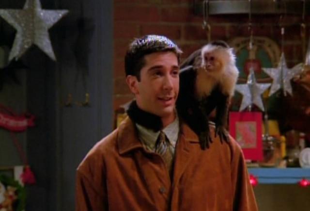 Ross e o macaco Marcel.