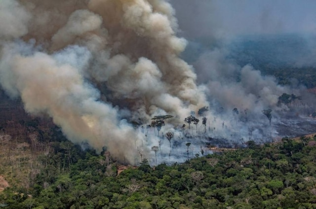 Incêndio registrado em 24 de agostona floresta amazônica deCandeias do Jamari, próximo aPorto Velho, em Rondônia