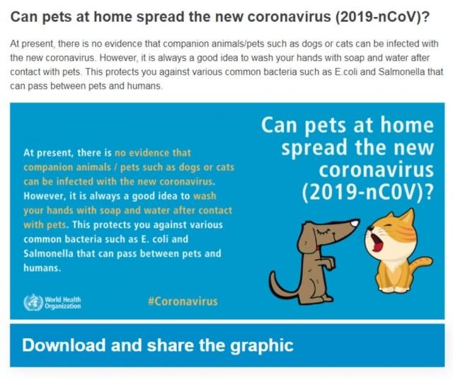 A Organização Mundial de Saúde (OMS), esclarece que não existe até agora evidências de que animais domésticos possam transmitir o novo coronavírus (Covid-19). Imagem:Reprodução/ OMSCliqueaquipara saber mais